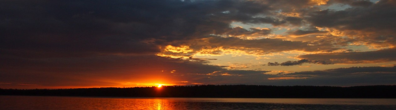 A Sunrise Swim/An Island Retreat