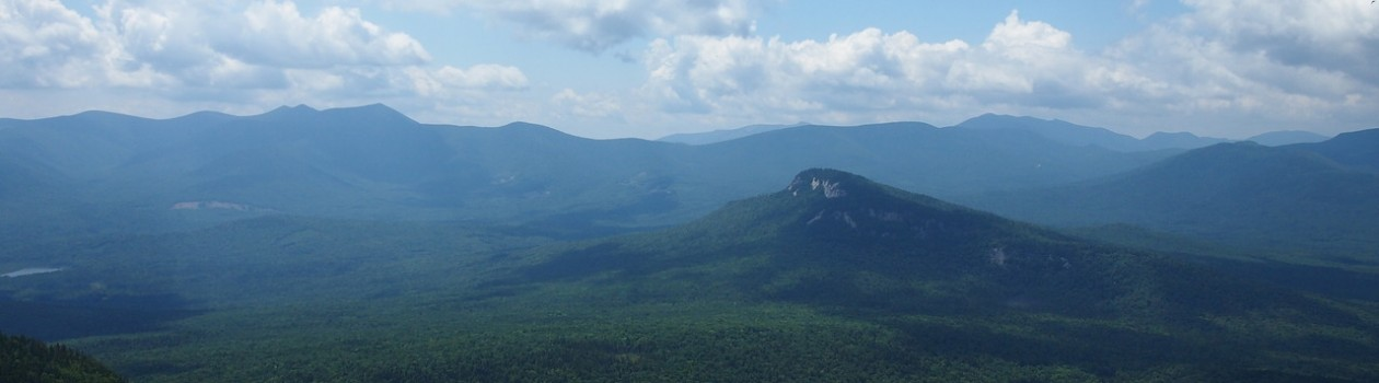 The View Mt. Tremont, NH1