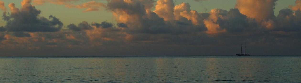Sea Leave